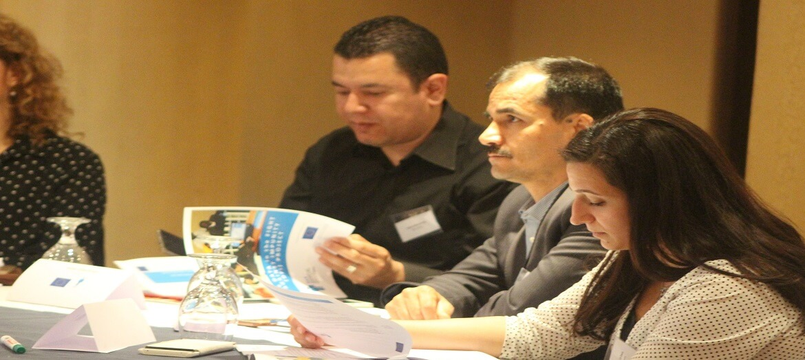 Rehabilitation centres from MENA region participate in DFI meeting