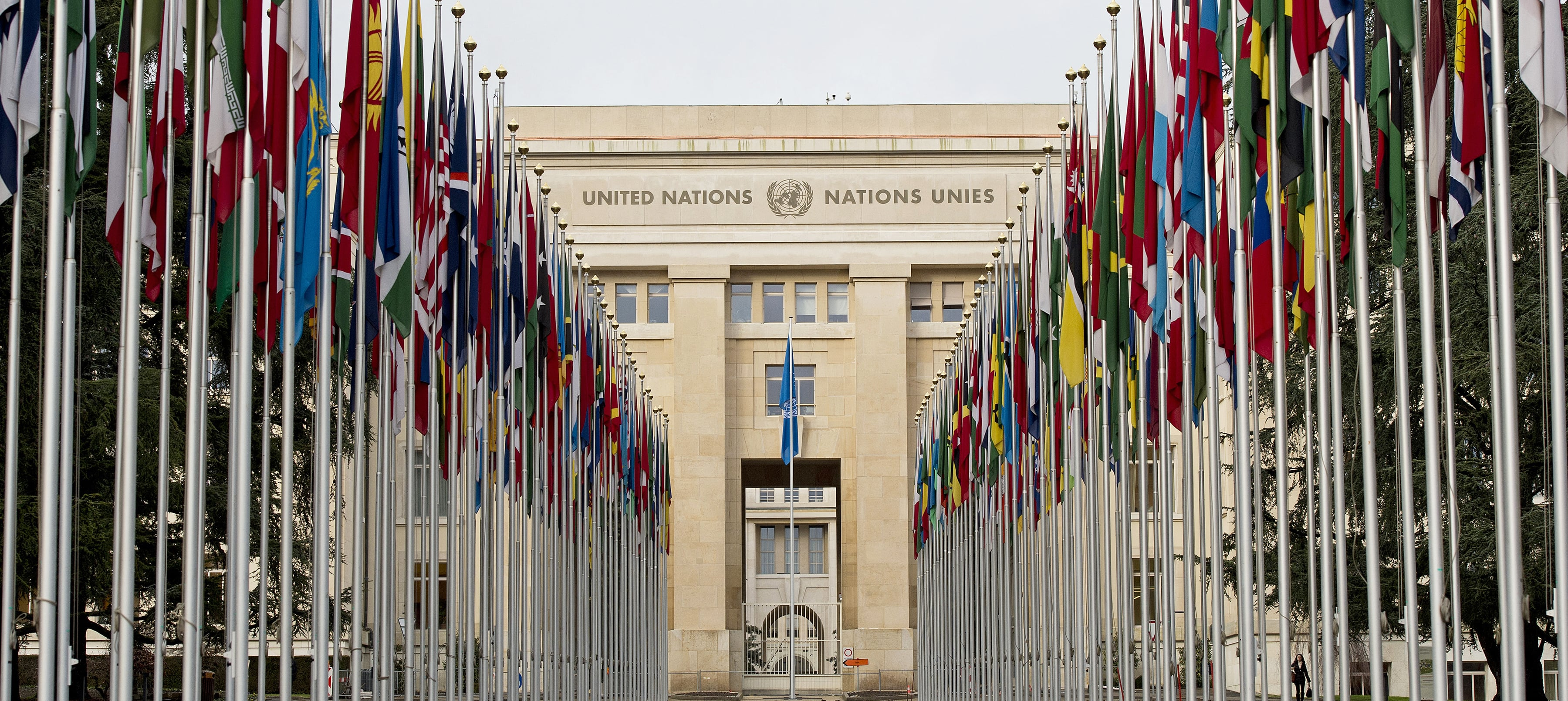 UN anti torture Committee calls for support to torture victims in Moldova